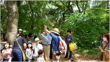 妙林苑2.jpg